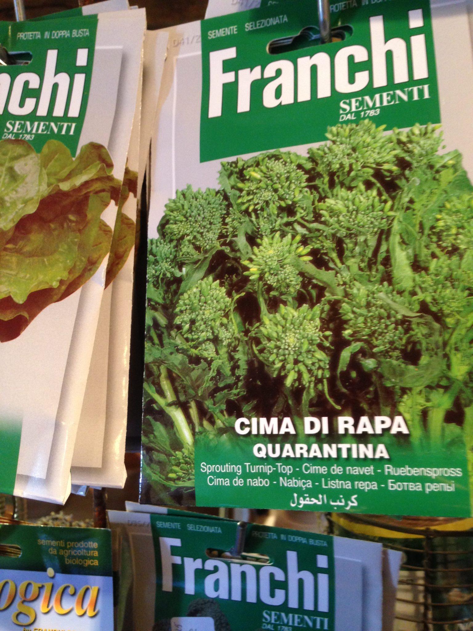 Cime di Rapa - Broccolirybs